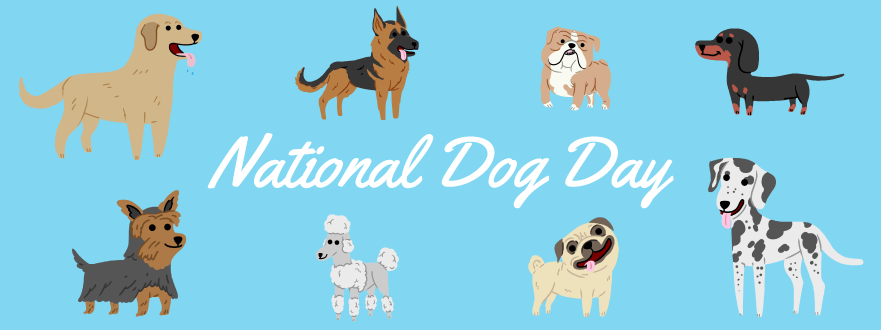 What To Do On National Dog's Day