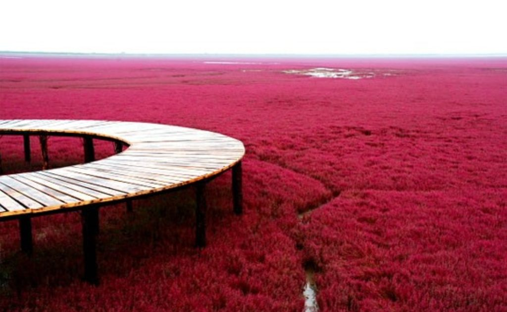 exotic Places on Earth