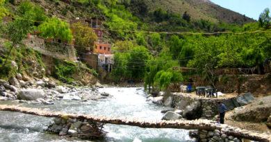 trip to Marrakech and Ourikka Valley