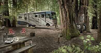 RV with Your Family -2020 - trendmut