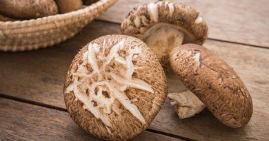 Health Benefits Of Shitake Mushrooms